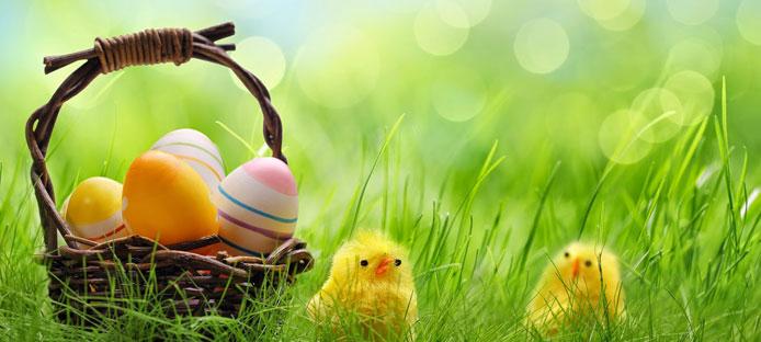 Offerta Pasqua Conero